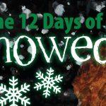 12 days of snowed book tour banner